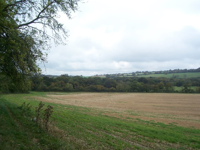 Roll's Copse from 'Monarch's Way' path