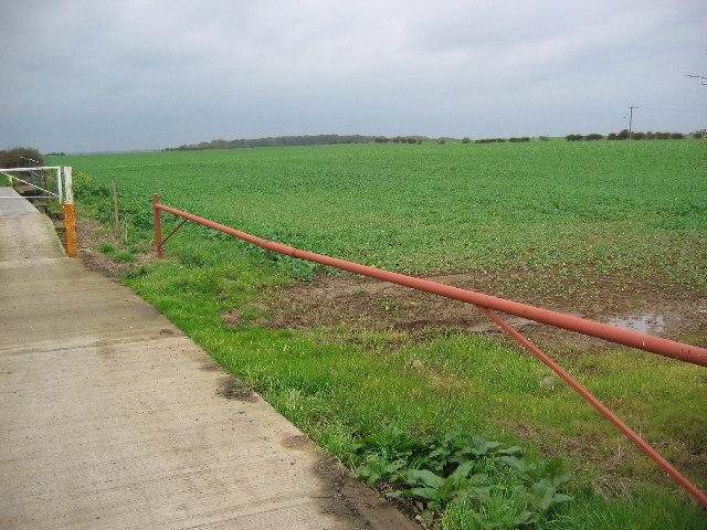 Farmland at Cowden