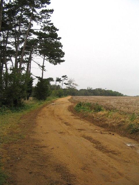 Farm track, Ramsholt, Suffolk
