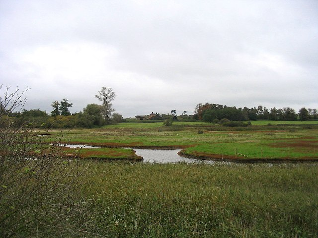 The Lodge and wildfowl ponds, Ramsholt, Suffolk