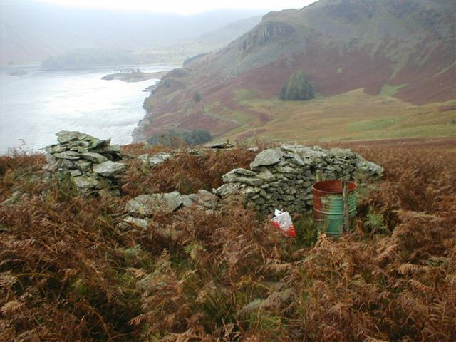 Ruined Sheepfold Above Welter Knotts