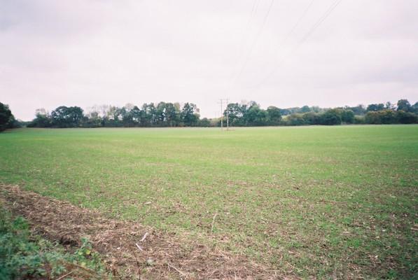 Farmland north of Paley Street