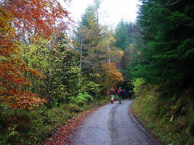 Glen Tilt road.