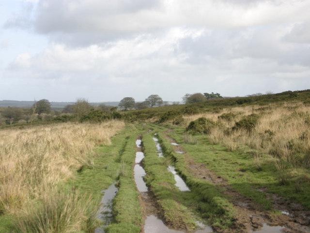 Path, Varle Hill, Dulverton, Somerset