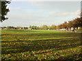 SJ3793 : Recreation Ground, Cherry Lane by Sue Adair