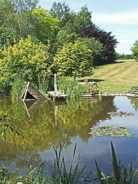 Pond at Hopleys Garden, Much Hadham