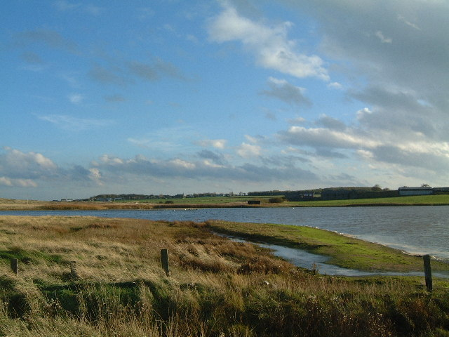 Cresswell Pond