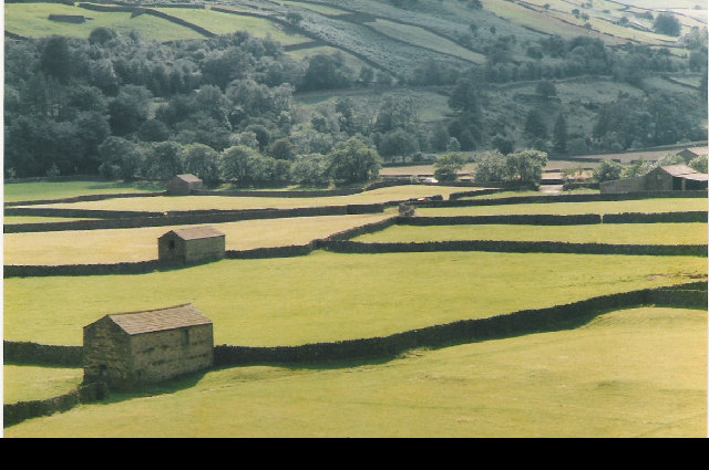 Fields and Field Barns