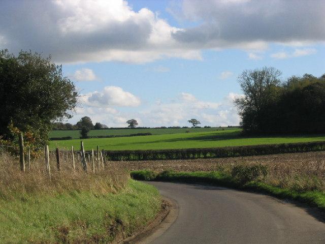 Deane Heath Copse near Bull's Bushes Farm