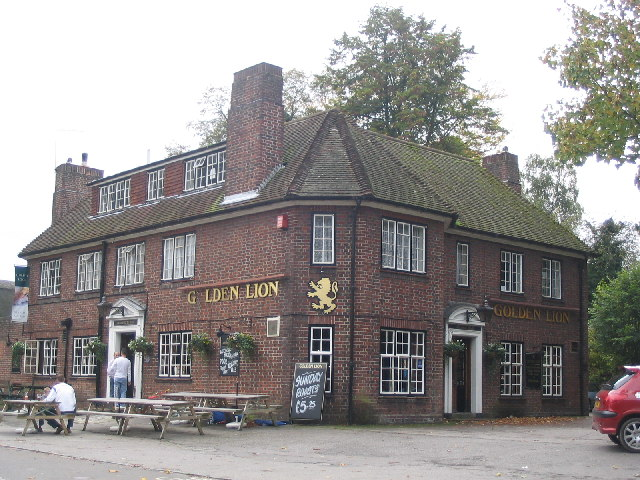 The Golden Lion in Basingstoke