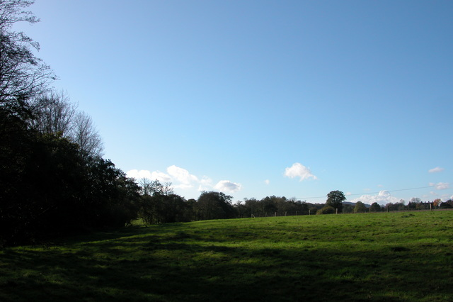Farmland and Woodland West of Midhurst