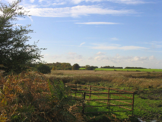 Walberswick Common, Suffolk
