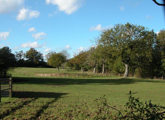 Farmland beside disused Petersfield-Midhurst railway.