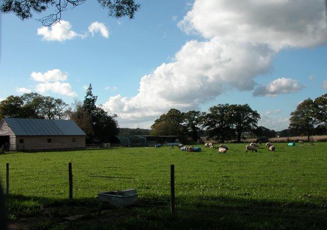 Bridgelands Farm