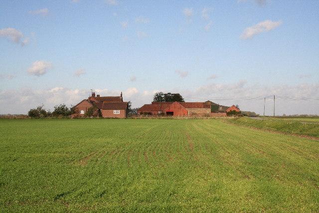 Miller's Farm