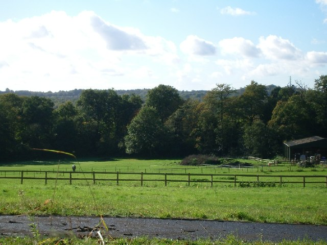 Fields south of St Ann's Hill