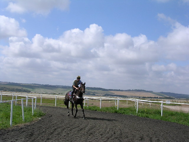 Gallops, Wellbottom Down