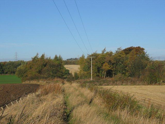 Farm lane, Tynemount.