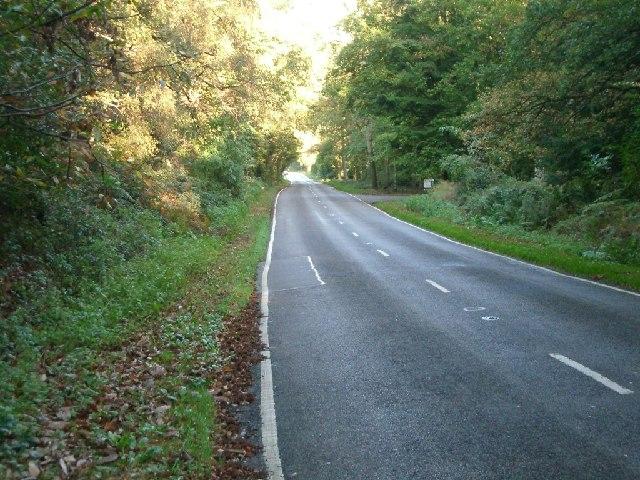 Stonehill Road