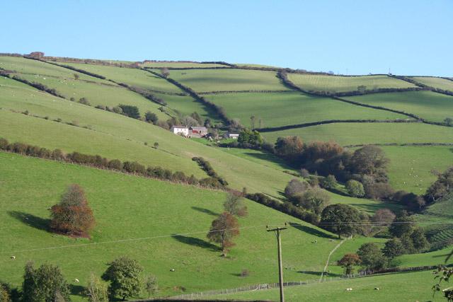 Combe Martin: Nutcombe Farm