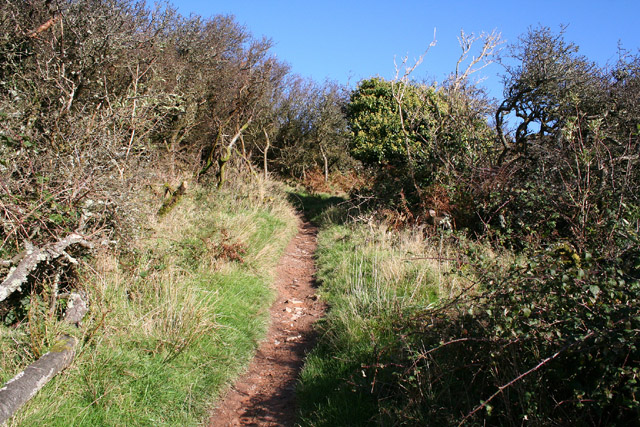 Combe Martin: the climb to Little Hangman