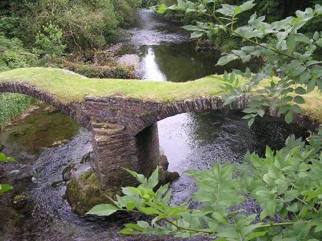 Pont Minllyn, Afon Dyfi