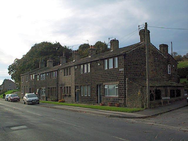 Woodview, Bogthorn
