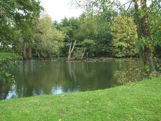 Great Witchingham Pond