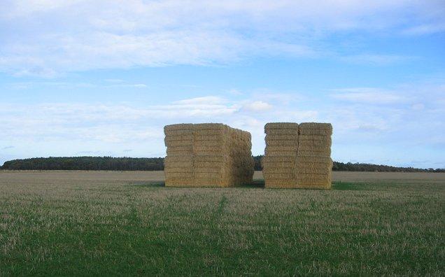 Bale stacks, Penston