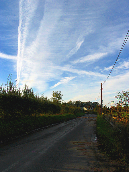 Country Road to Great Shefford
