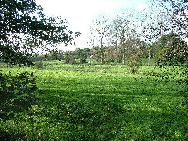 Fields near Eade's Mill