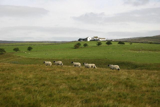 Broadley's Gate Farm, Upper Teesdale
