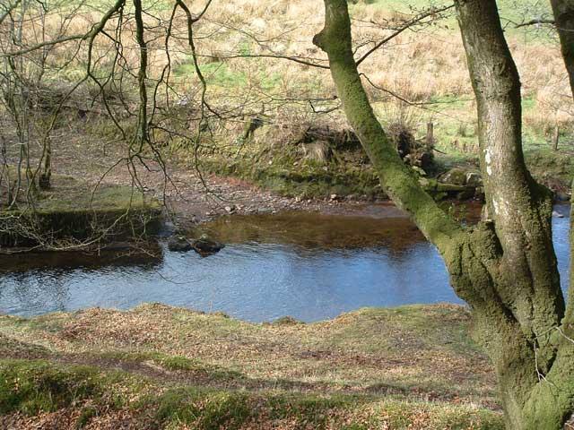 Dane's Brook