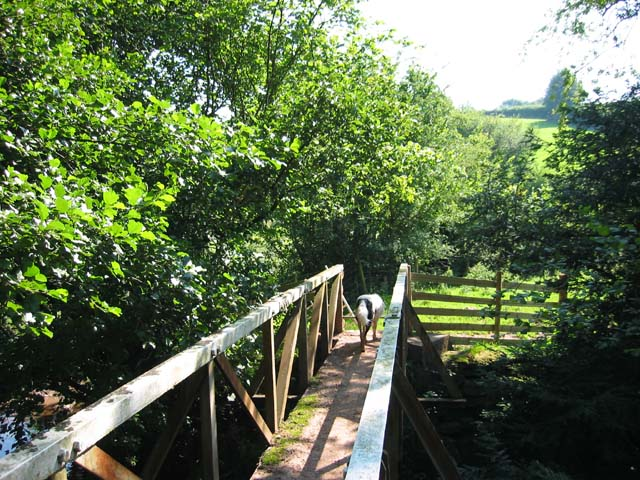 Footbridge over the River Monnow