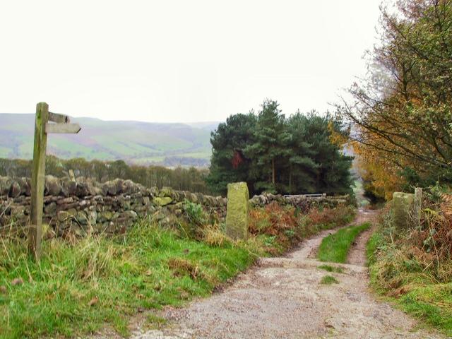 Touchstone Trail
