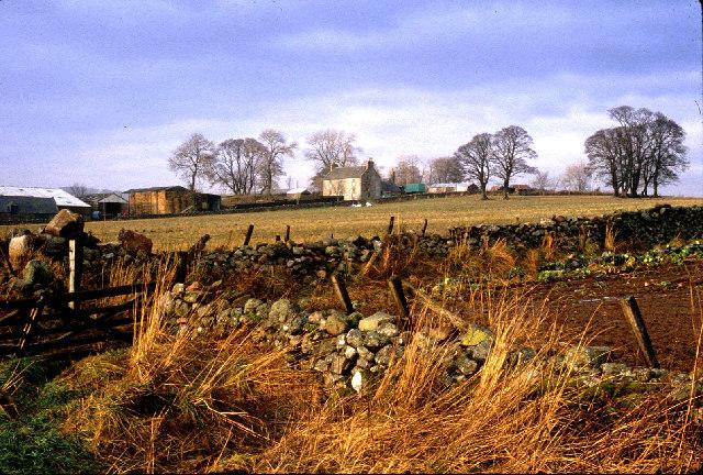 Sunhoney farm