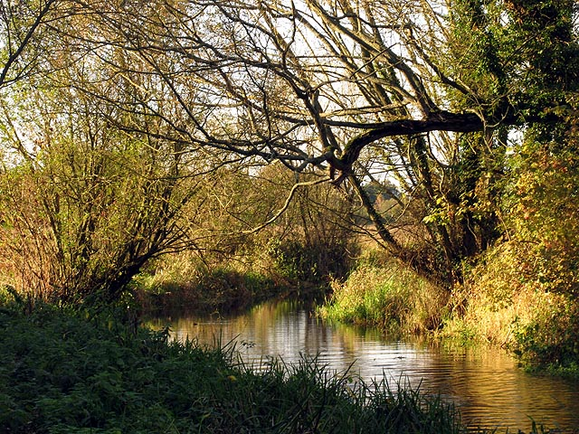 The Lambourn River at Elton Farm