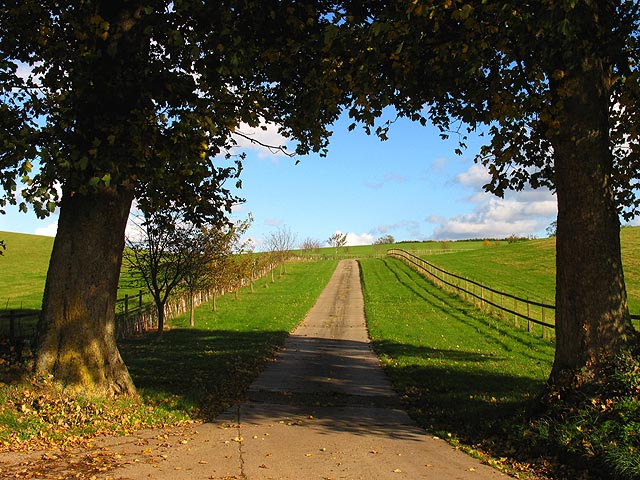 Byway to Wyfield Manor