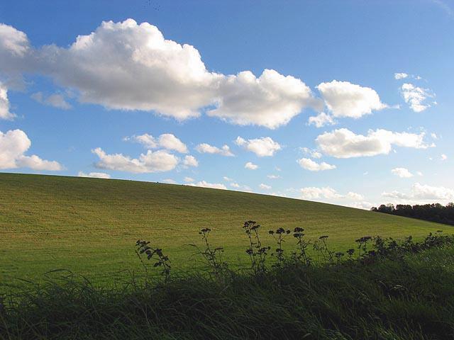 Hillside near Green Lane Track