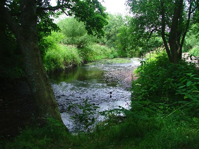 River Browney
