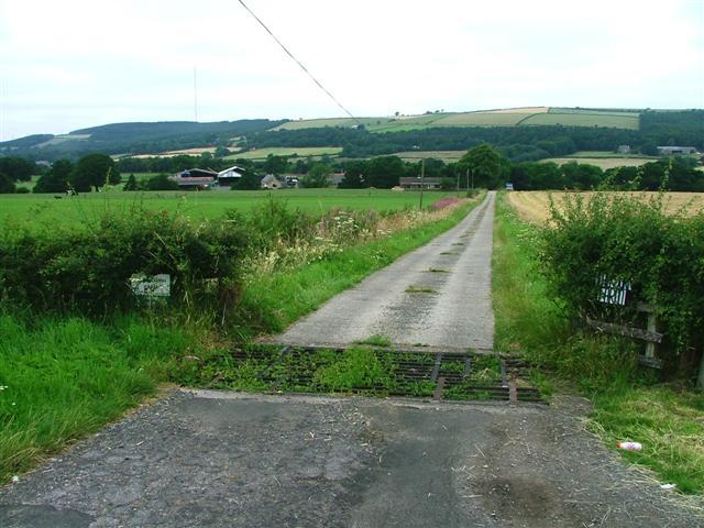 Farm Track to Blackburn