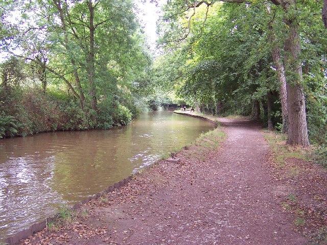 Llangollen Canal near Blake Mere