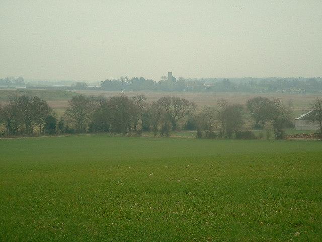 Fields and marshland surrounding Laurel Farm