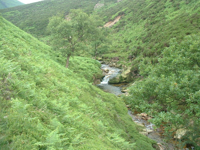 Bleadale Water