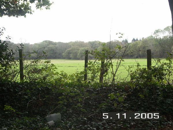 Field adjacent to Rollestone Road, Holbury, Hants