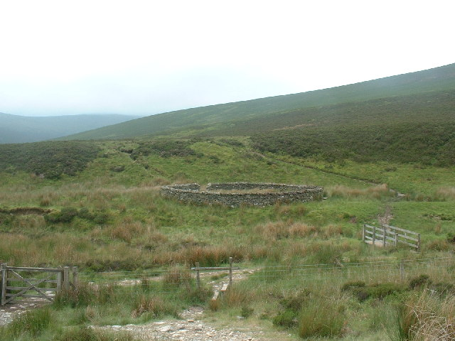 Circular Sheepfold Wiley Gill