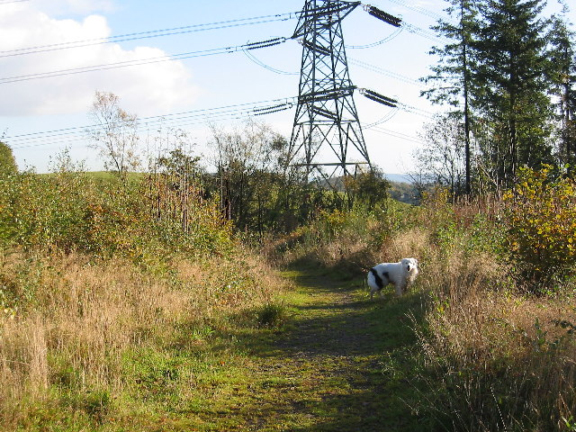Pylon near Rudry