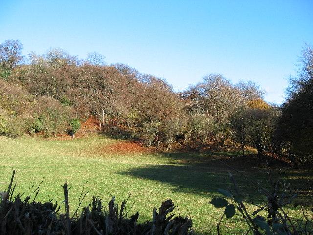 Below Cefn-onn farm