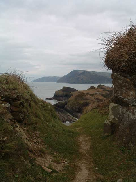 View from Widmouth Head