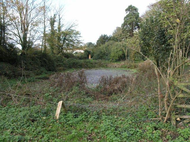 Small pond near Bradwell